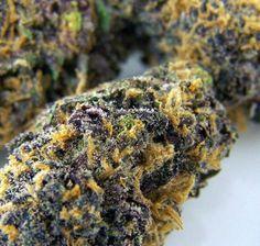 Pineapple Purple kush