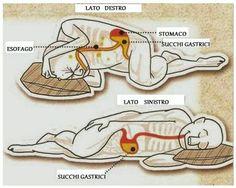 LA SIESTA SACRA DOPO I PASTI. I monaci antichi dopo ogni pasto si coricavano soltanto 10 minuti ed era quello che bastava per alleggerire tutta la digestione, come mai?