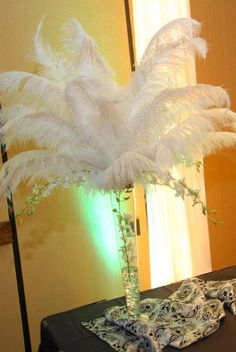 Amazing prices for Ostrich fethers, Baby B Feathers