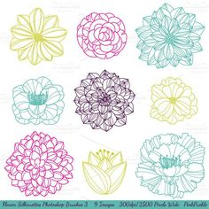 Flower Silhouettes PS Brushes - No 3. Photoshop Brushes. $6.00