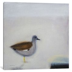 """Mercury Row Gadwall Painting Print on Wrapped Canvas Size: 37"""" H x 37"""" W x 1.5"""" D"""