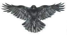 Dna Tattoo, Sternum Tattoo, Tattoo Spirit, Tattoo Motive, Tattoo Art, Tattoo Wings, Mandala Tattoo, Winter Tattoo, Flower Tattoo Designs