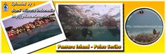 Pantara Island | Thousand Islands | Pulau Seribu Tourism