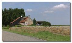 boerderij walcheren - Google zoeken