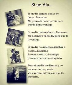 Frases en español by ernestine Love Phrases, Best Friends Forever, More Than Words, Spanish Quotes, Positive Thoughts, Friendship Quotes, Wise Words, Decir No, Favorite Quotes