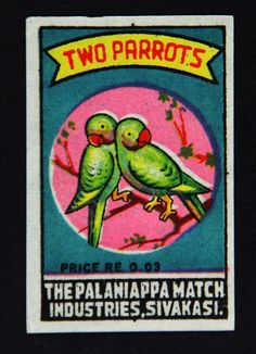 Two Parrots - India