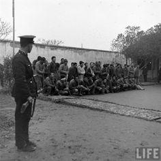 上海郊区被俘的共产党游击队