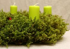 Forest fairy tale. Advent wreath,Door decor,door decoration,Advent candle holder, Christmas wreath, Winter wreath set, moss wreath, Natural by broomsshop on Etsy