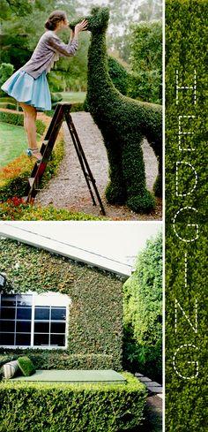 creative hedging. i'll take both.