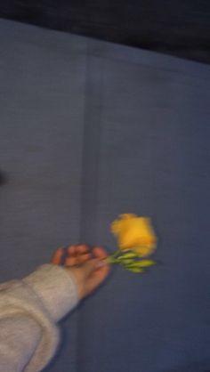 48 Trendy Flowers Aesthetic Yellow Pastel { Flowers } - Yellow = Me - Aesthetic Drawing, Flower Aesthetic, Aesthetic Grunge, Quote Aesthetic, Aesthetic Vintage, Aesthetic Photo, Aesthetic Pictures, Aesthetic People, Photography Aesthetic