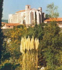 Basilica to Mary Magdalene in Saint Maximin de Provence, France Saint Maximin, Marie Madeleine, Mary Magdalene, John The Baptist, Catholic Saints, France Travel, Pilgrimage, Anthropology, Dream Vacations
