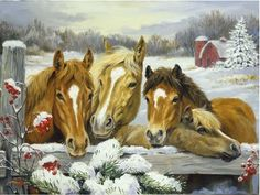 Winter Family of Horses - Horses Wallpaper ID 1892815 - Desktop Nexus Animals Christmas Horses, Christmas Animals, Christmas Art, Christmas Colors, Farm Animals, Animals And Pets, Arte Equina, Painted Horses, Arte Country