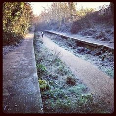 Highgate to Finsbury Park abandoned railway line in winter . I spent most of my childhood playing on this disused railway . Very fond memories:-):