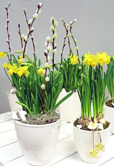 Vibeke Design, Spring Plants, Palm Sunday, Family Events, Winter Garden, Silk Flowers, Container Gardening, Flower Arrangements, Planter Pots