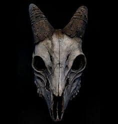 Goat Skull Profile