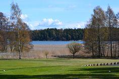 Aura Golf