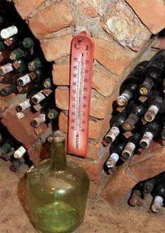 Barbecue Design, Bbq Steak, Wine Rack, Brick, Home Decor, Bottle Rack, Decoration Home, Room Decor, Bricks