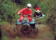 Google Image Result for http://www.wexfordcentreproject.com/treasure-hunters/images/quading.jpg