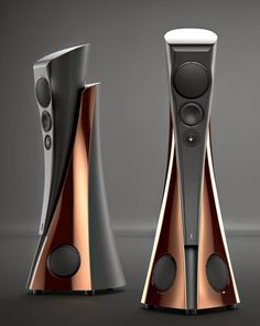 The awesome Estelon Extreme Speakers