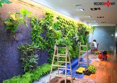 Vertical Garden  Serafini Amelia  Living Green Wall-Vertical Garden Design