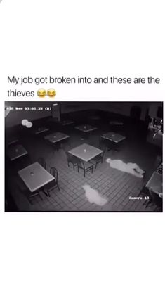 If criminals were smart the police would be out of a job. If criminals were smart the police would be out of a job. Haha Funny, Stupid Funny, Funny Cute, Hilarious, Funny Video Memes, Funny Relatable Memes, Funny Posts, Videos Funny, All Meme
