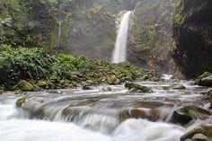 WEBSTA @ le_chatooo - #CostaRica  #ThisisCostaRica  #Visit_CostaRica…