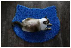 Fluffy electric blue carpet  cat head shape