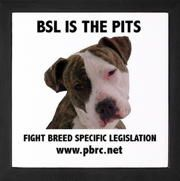 Breed Specific Legislation - It is not the dog, it is the owner.  Kinda like it's not the kid, it's the parent!