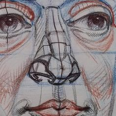 Nose structure detail #art #artist #portrait #sketch #drawing ...