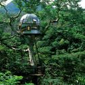 New Treehouses of the World – Beach Rock Treehouse beach rock, tree houses, tree homes, rock treehous