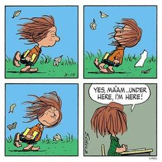 Funny school humor friends ideas for 2019 Peanuts Cartoon, Peanuts Snoopy, Peanuts Comics, Snoopy School, Funny School Pictures, Peppermint Patties, Charlie Brown And Snoopy, Supernatural Funny, Snoopy And Woodstock