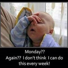 Check out: Baby Memes - Tomorrow's Monday? One of our funny daily memes selection. We add new funny memes everyday! Bookmark us today and enjoy some slapstick entertainment! Funny Baby Memes, Funny Babies, Funny Shit, Funny Stuff, Baby Humor, Funny Sayings, Funny Kids, Kid Sayings, Baby Jokes