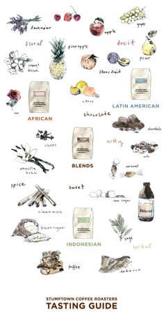 Coffee tasting guide via Stumptown