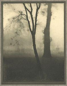Kensington Gardens, November, London, 1910, Alvin Langdon Coburn
