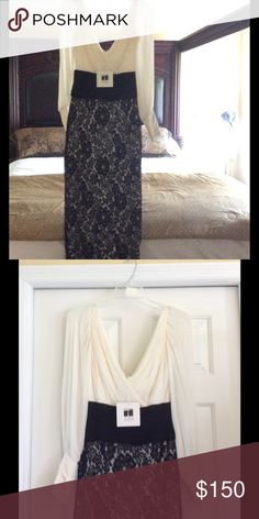 Tadashi Elegant Long black lace dress Beautiful long dress size 2. Worn once for a photo shoot. Could use a visit to dry cleaners , cuffs have collected dust. Dresses Long Sleeve