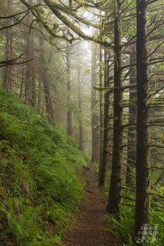Neahkahnie Mountain, Oregon, by Joshua Johnston
