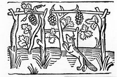 The Fox and the Raisins, illustration from Caxton's 'Aesop's Fables', 1484 (woodcut) Postcards, Greetings Cards, Art Prints, Canvas, Framed Pictures, T-shirts & Wall Art by English School