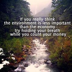 40 Best Environmental Quotes To Inspire You To Help Save The Planet Save Planet Earth, Save Our Earth, Save The Planet, Our Planet, Salve A Terra, Angst Quotes, Environment Quotes, Save Environment, Life Quotes Love
