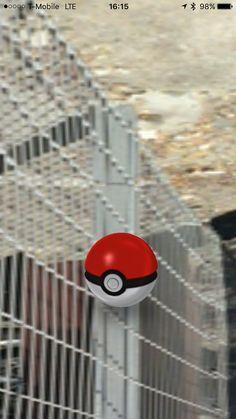 12 best pokebugs images catch em all pokemon go the app rh pinterest com
