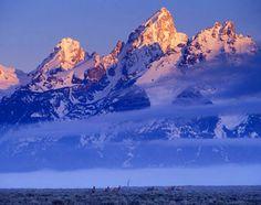 Grand Teton National Park, United States