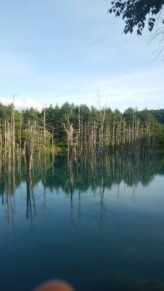 有名な 青い池