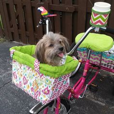 Little Cino is ready to go for his morning ride to get some coffee on this chilly morning! #bicycle #bicycleaccessories #littleoldman #basket #handmade #sunbicycles #nsb #coffeetime #scruffy #furbaby