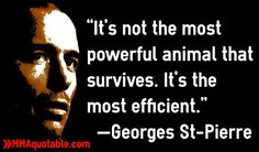 Motivational Quotes with Pictures: GSP: The most efficient, not the most powerful animal will survive