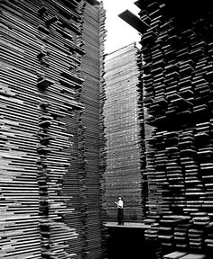 onlyoldphotography: Alfred Eisenstaedt: A man standing in the lumberyard of Seattle Cedar Lumber Manufacturing. 1939