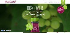 20 Wonderful Website Designs using Video Background