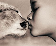 Photography by Gregory Colbert >!