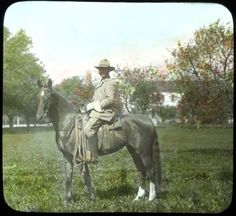 Kentucky Thoroughbred- Elmer L. Foote Lantern Slide Collection, ca. 1900-1915 (Lexington Public Library)