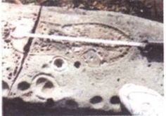 ossilized human-like footprints have been found in rocks from the Carboniferous period to the Cambrian period, thus offering dramatic, testimony that some bipedal creatures were walking about from 250 million to 500 million years ago. The fossil tracks of both bare and shod feet of a decidedly humanoid impression have been found in sites in Virginia, Pennsylvania, Kentucky, Illinois, Missouri, Utah, Oklahoma, and Texas. The prints provide evidence of having been made by human feet at a time…