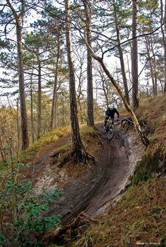 This shot is taken at my local trail. This descend is famous for taking down a lot of riders, but also for being one of the most technically fun. Steep down, adrenaline levels go steep up