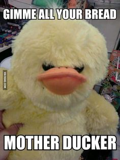 Don't mess with this quacka